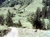 allgaeu-alpen-480
