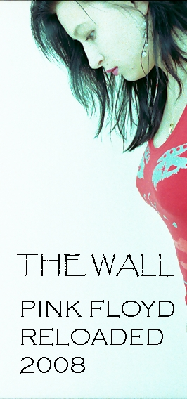 Coverdesign The Wall