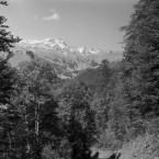 Landschafts-u. Naturfotografie: Allgäu im September